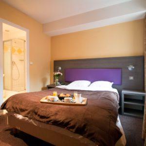 Adonis Annecy Icône Hôtel